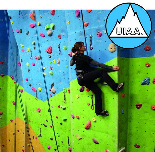 Female climber ascending climbing wall