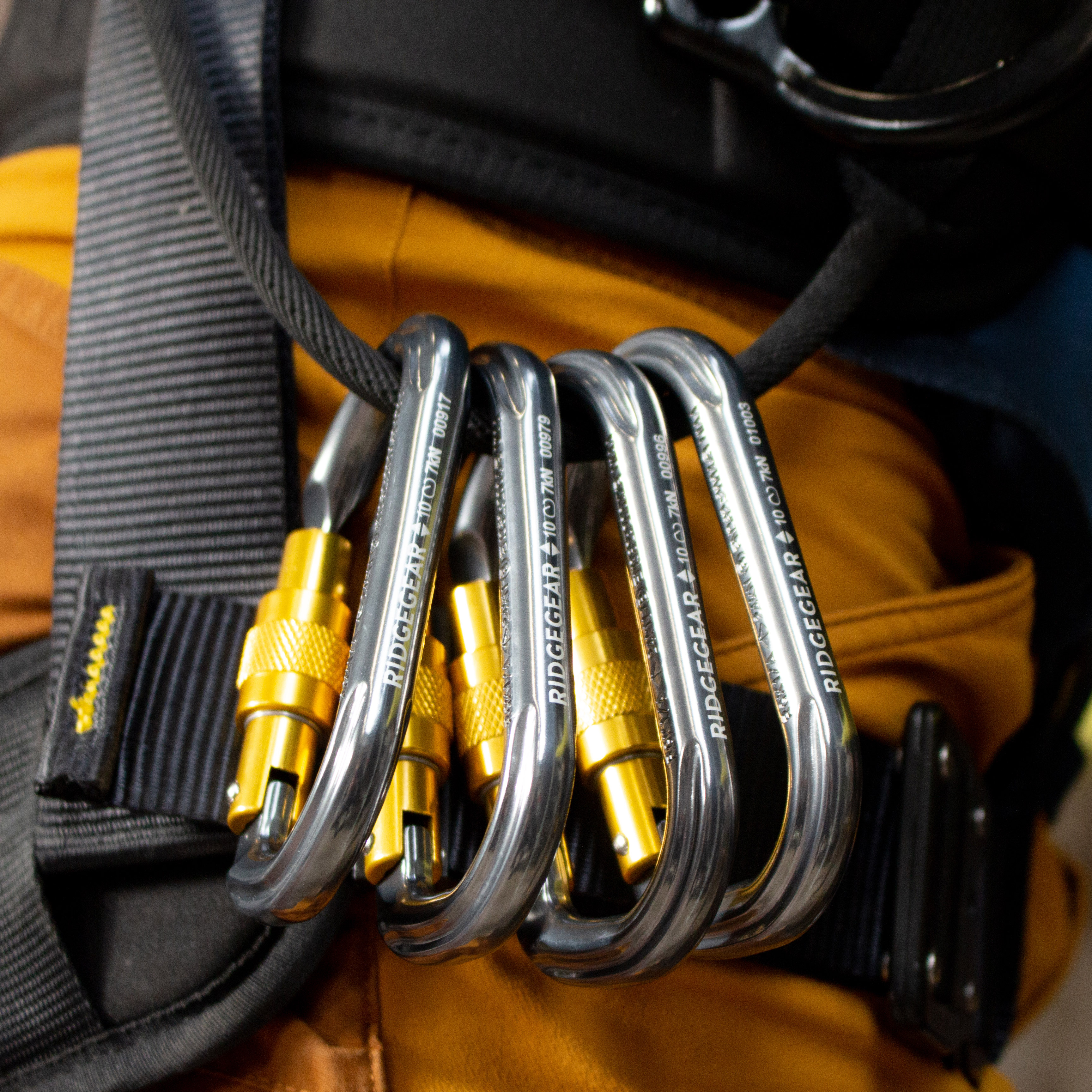 Multiple silver aluminium karabiners with yellow screwgate conected to tool loop of safety harness